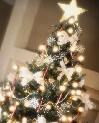 Christmas_Tree_1.png