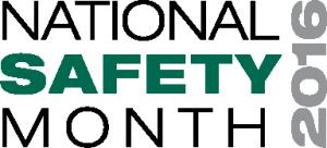 NSM-Logo-2016-1-300x136